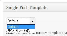 single-post-template