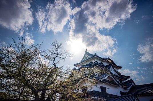 青空と彦根城