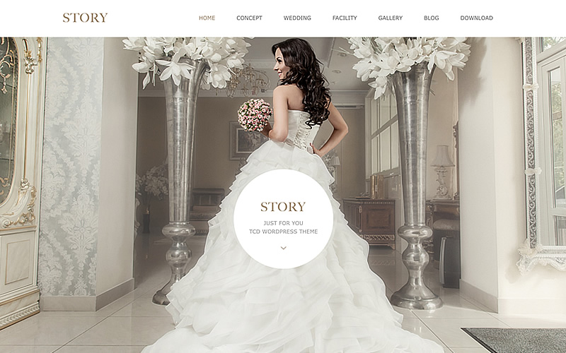 WordPress Theme STORY