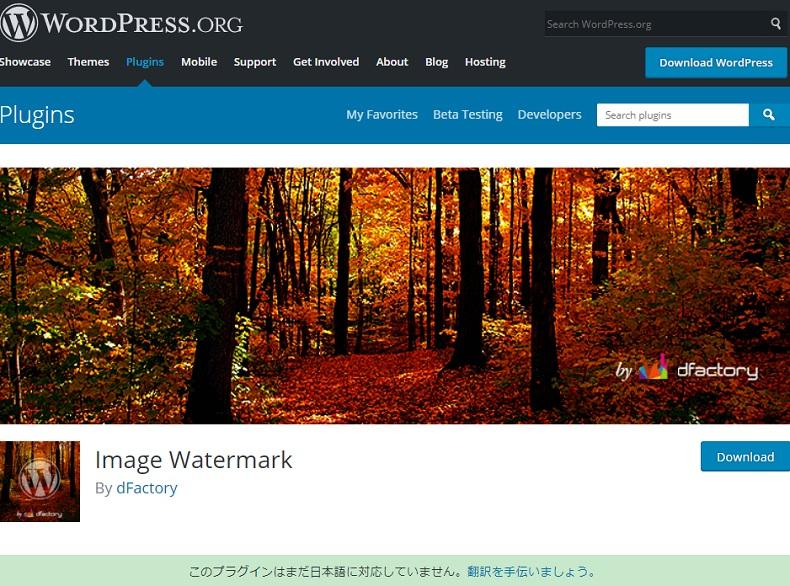 画像へ著作権表示を施すWordPressプラグイン「Image Watermark」