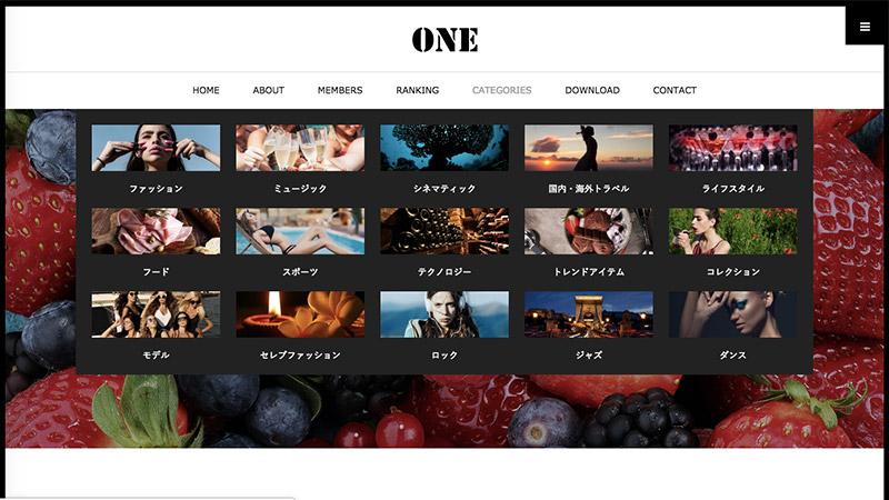 WordPress Theme ONE