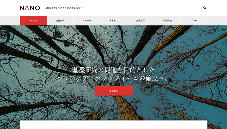 WordPress Theme NANO