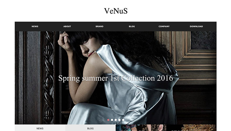 WordPress Theme VENUS