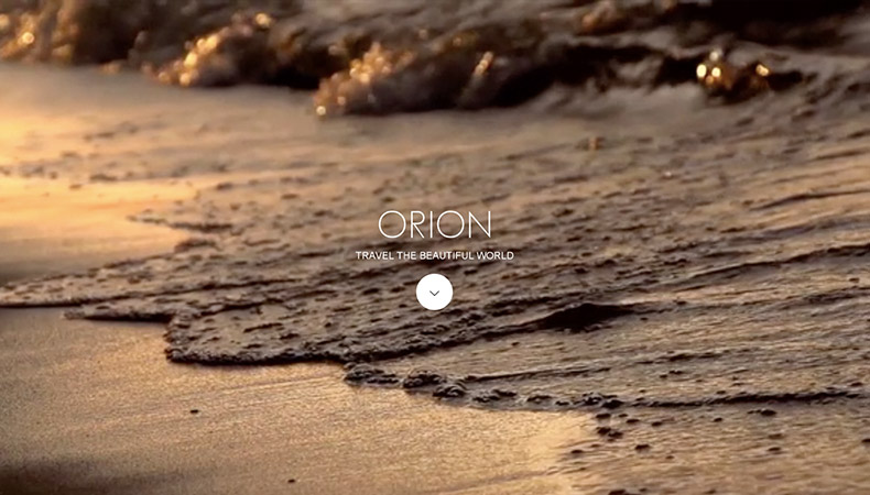 WordPress Theme ORION