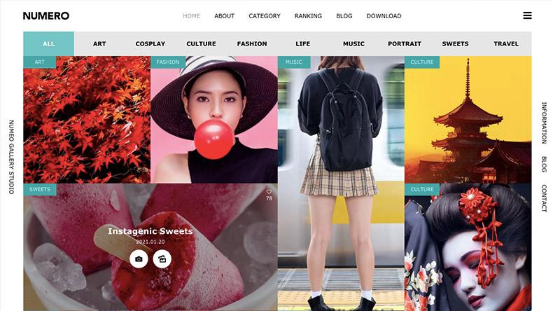 WordPress Theme NUMERO