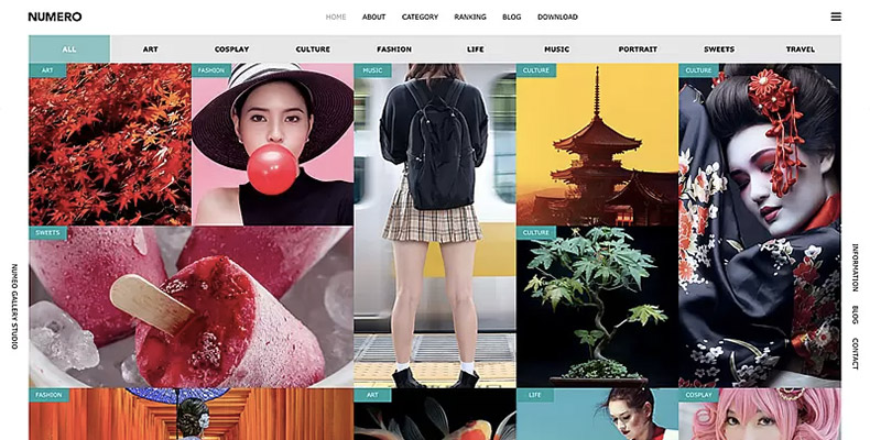 WordPress Theme NUMERO