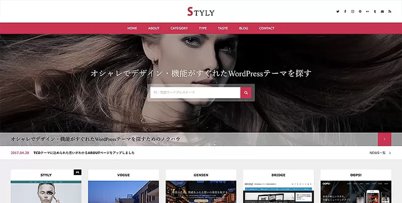 WordPress Theme STYLY