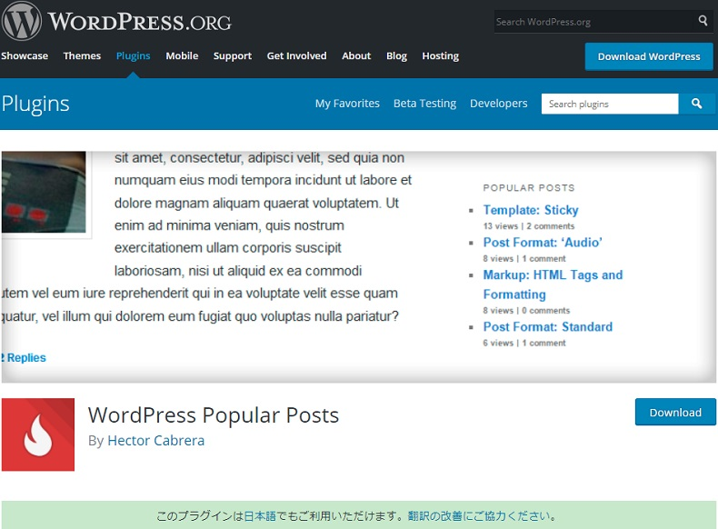 人気記事をランキング形式で表示できる「WordPress Popular Posts」